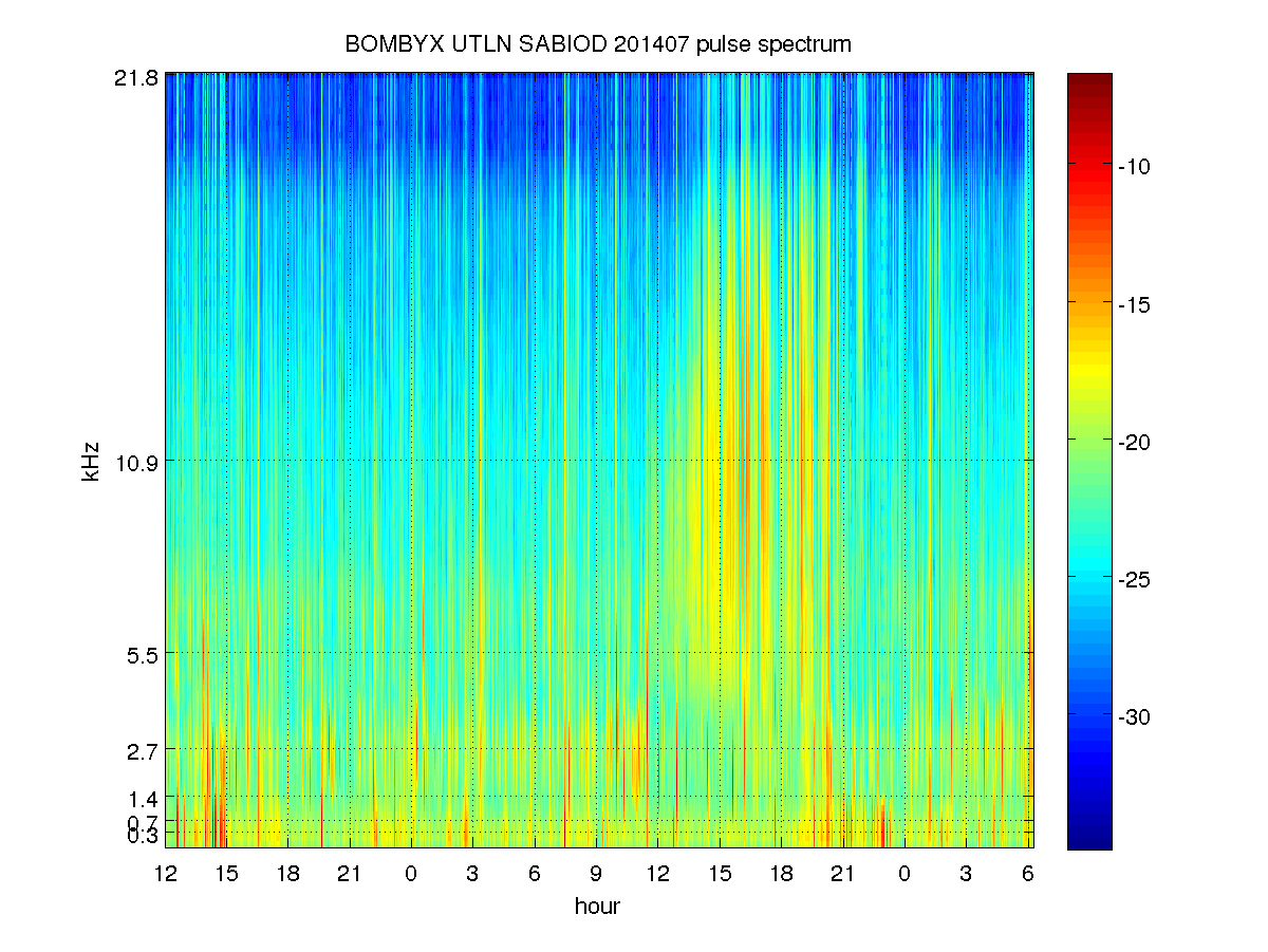 long term spectrogram (2 days) of BOMBYX SABIOD showing Physeter activity